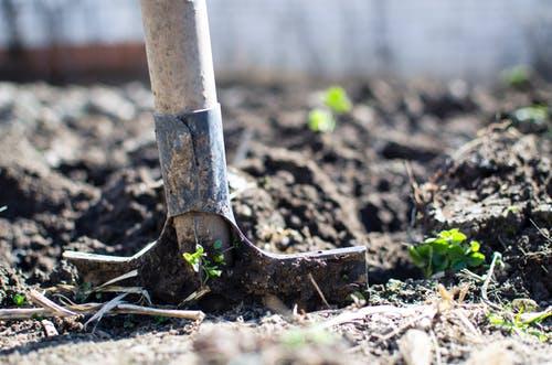 برترین سموم و کود کشاورزی